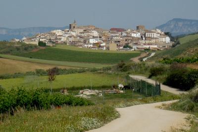 畑に白い道と町の家並みが映えますなぁ