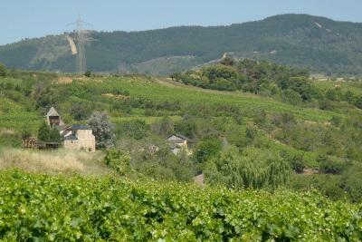 この辺りのビエルゾもワインの産地として有名だ