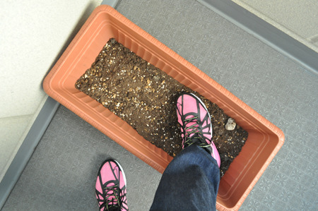 わざわざガッツリと土を付けてから始める。