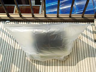 ポットにビニール袋をかぶせて、ビニールハウスだと言い張ってみる。釣り用のオモリをいっぱい仕込んで風対策もバッチリ。