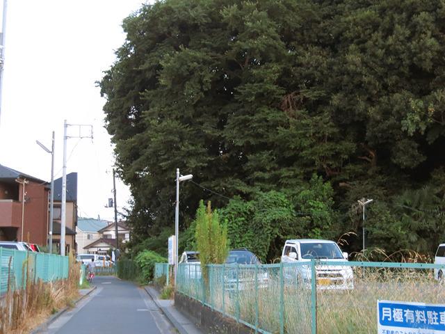 一気に親近感がわく風景に。新幹線「新」駅はこうでなっくっちゃ!