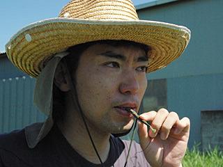 「昔の農家はな、煙草の代わりに枝なりの糠漬けキュウリを吸ったんだよ」(妄想)