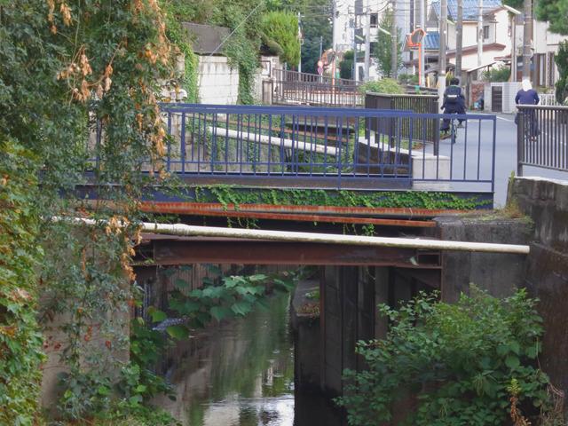 マイ橋の横によくあるパイプ橋。