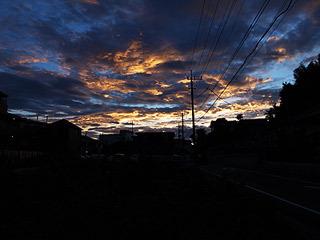 その日の夕日は綺麗だった