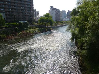 河の上の橋とか他に比べて風が涼しくて助かる。