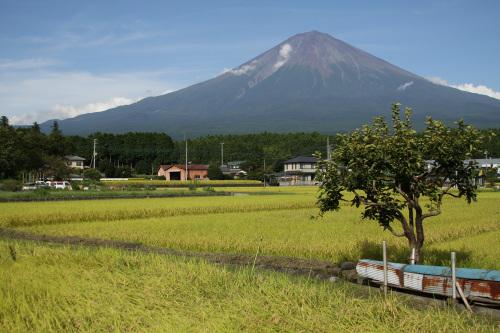 みんな大好きわたしも大好き富士山