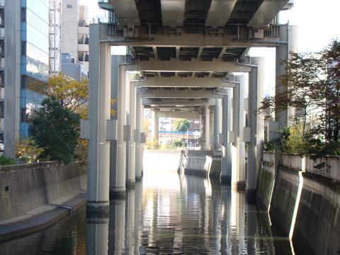 いつかこの神田川を遡上したいのよね。どこまでも。