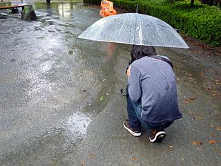 とは言え背中をぐっしょり濡らしながら地面の写真を撮るアラフォーはいろいろまずい気もする
