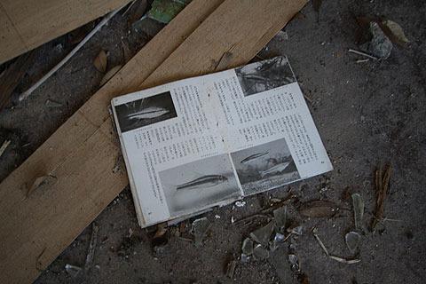 本が落ちていた。
