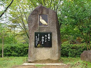 日本産最後のトキ、キンの石碑に合掌。
