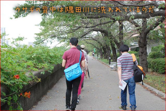 「背組」は隅田川が描く背中のカーブを行き、