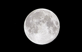 帰り道、見事な十五夜満月が。ウサギのように見上げた。