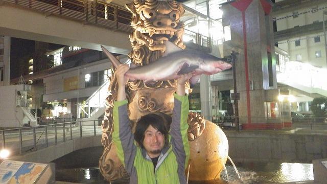 駅前。観光地。川。でもサメが釣れる。