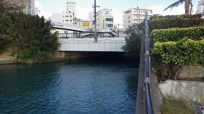 と思っていたら数十メートル遡っただけで川幅が極端に狭くなる。