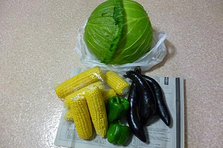 せっかくなのでトウモロコシを1袋(100円)買ったら、その何倍ものおまけをつけてくれた