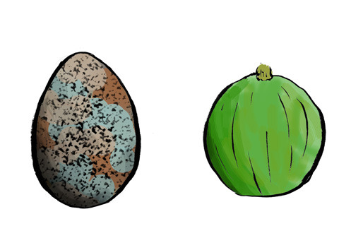雑草メロンのイメージ。ウズラ卵ぐらいの大きさで、まんまるい。