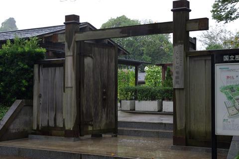あいにくの雨。しかし雑草メロンに対する情熱は折れない。