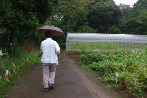 雨の中、案内をしてくれた職員の山村さん。