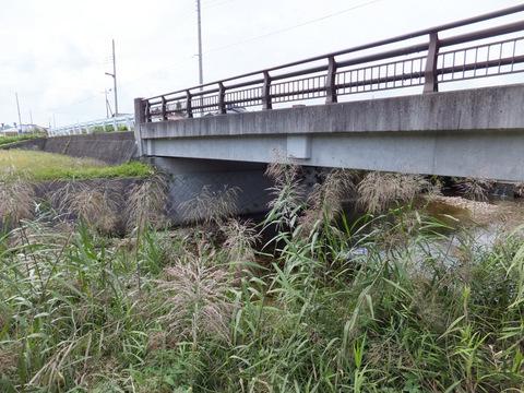 この橋の下が僕らの「秘密基地」だった