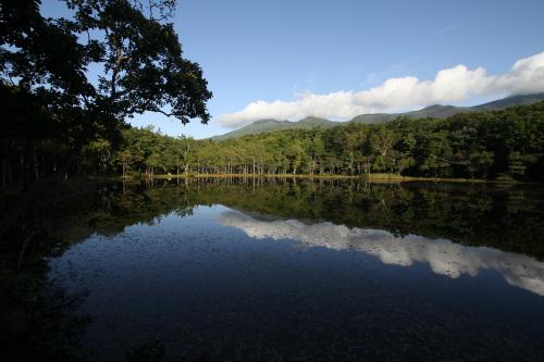 その名の通り五つの池が密集する知床五湖