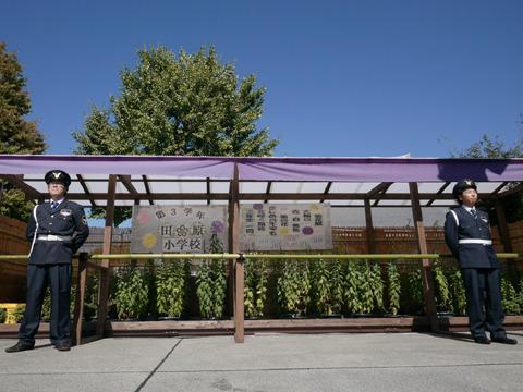 小学校の鉢植えにとてつもないプレミアム感が宿る