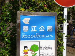 たまたま訪れた江戸川区の公園。