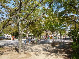 緑さわやか、秋の陽気であります。