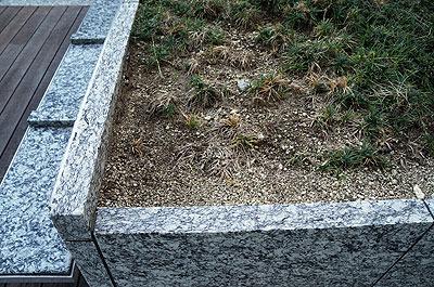 の、植え込みの土