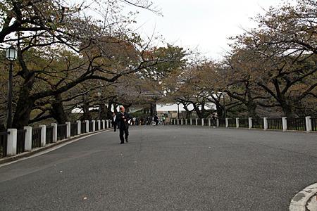 あの門をくぐれば武道館はすぐ