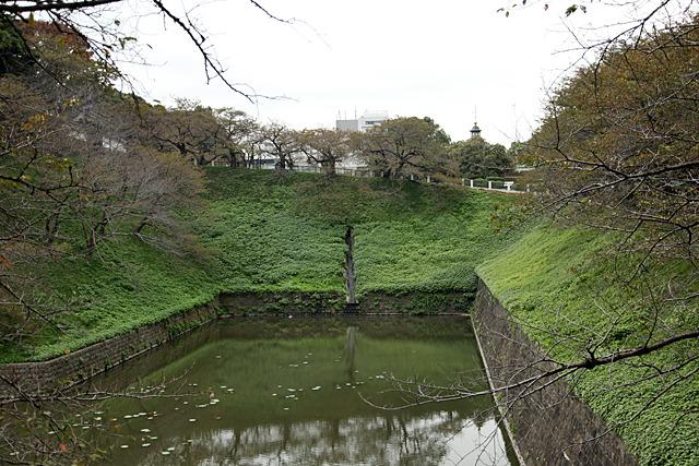 下流から見ると完全にダムの姿