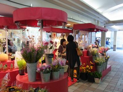駅前の花屋さんに尋ねてみる。