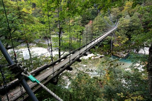 対岸に渡る吊り橋も揺れに揺れる