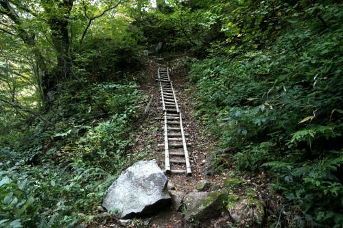 全身が錆び付いたように重い中、山に入る