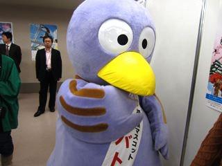 埼玉のコバトン。生で見ると結構かわいいなあ。