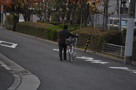 自転車は乗るだけのものではないのか。