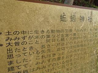 ずばり「蚯蚓神社」