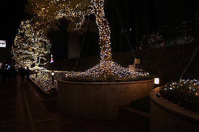 ロープをかけられてガリバーのようになっていた樹