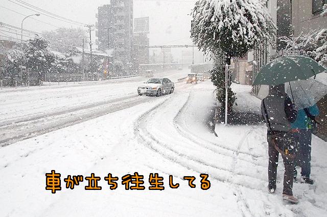 東京でスタッドレスタイヤ常備している人ってどれぐらいいるんだろう。