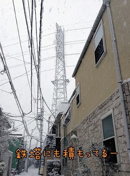 鉄塔に雪積もってるの初めてちゃんと見た!たいへんだけどすてき!