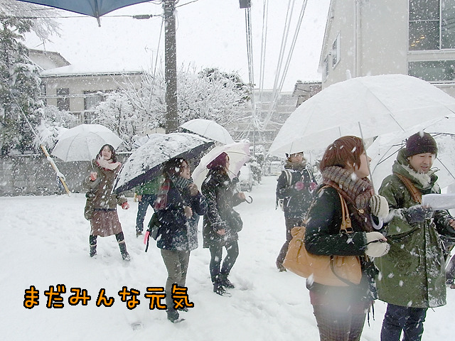 しかし、きっと雪国の人がこの写真を見れば「甘いな」と思うのだろう。そう、傘だ。