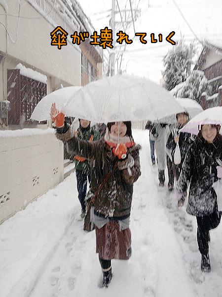 雪の重みと、電線から落ちてくる「雪爆弾」で傘がやられていく。でもまだ笑みが。