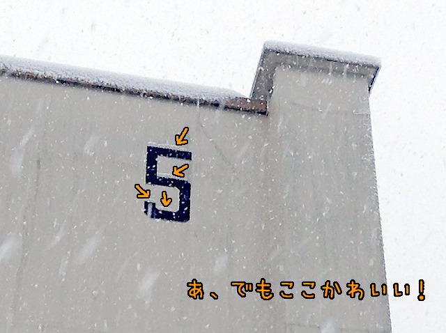 でもこの号棟表示に雪が積もってるのはかわいいと思った。