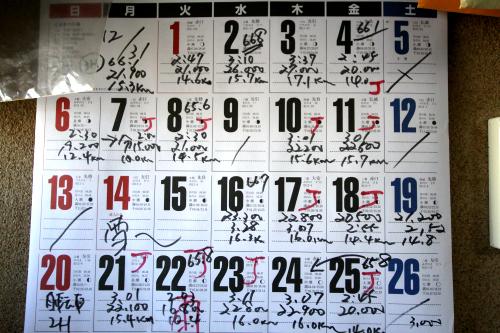 カレンダーには毎日の歩いた時間、歩数、距離が記されている