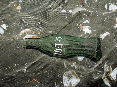 貝だけではなく、ビンやカンなどの人工物に入っていることもあるのだとか。