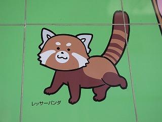 清水駅で見かけたさくらももこさんによるレッサ―パンダのイラストがかわいかった。