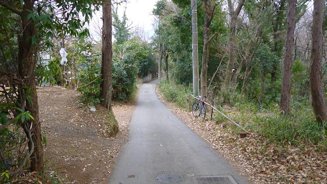 道路の左側が神奈川県、右側が東京都