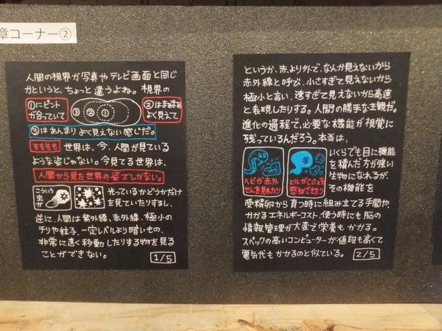 文章コーナーは3Dの原理や人間の視覚について解説してある(ジブリ美術館みたいだ)