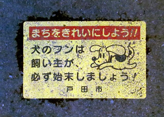 飼い主がどうにかせねばなるまい、と思わせる自然体の犬。大阪のあれはなんだったのだ。