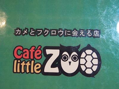 カメとフクロウに会える店。ロゴもかわいい。