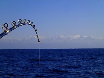 釣竿の向こうには雪化粧の立山連峰を望む。釣りをしている間、ずーっと雲だと思っていた。